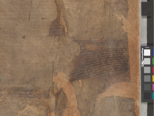 fired damaged copy Magna Carta