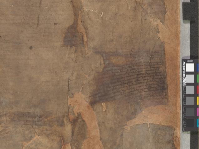 fired damaged copy Magna Carta