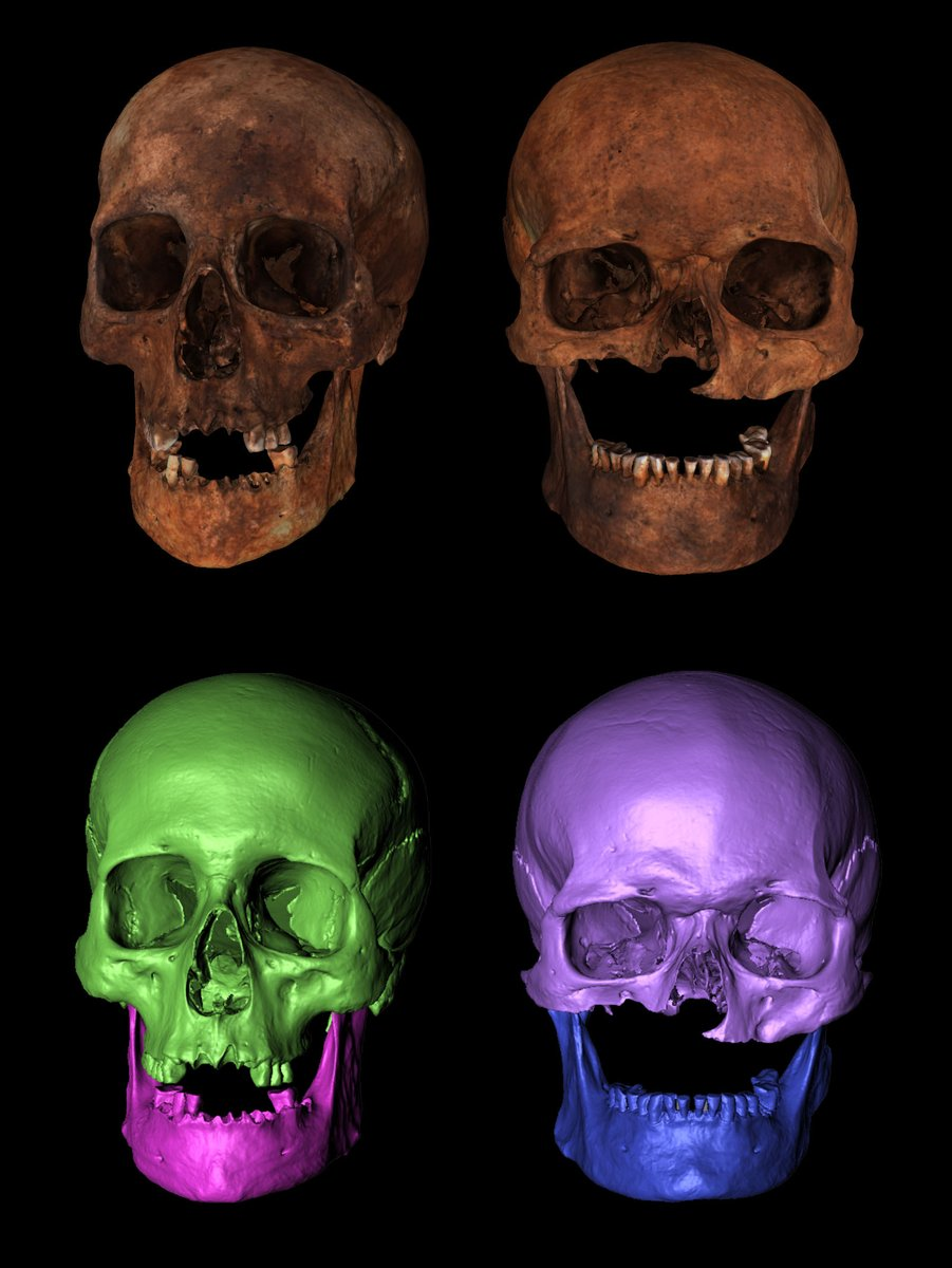 Image 1 - 3-D scans - credit Visualising Heritage, UoB